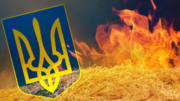 Зачем ВСУ жгут поля на Донбассе