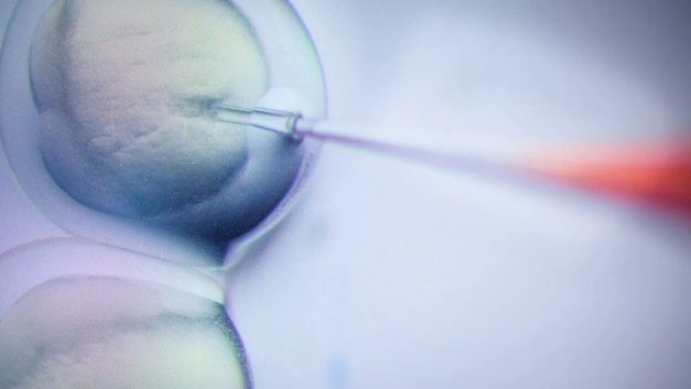 Шанс на выздоровление: В центре им. Рогачева начали применять клеточную терапию для лечения онкозаболеваний