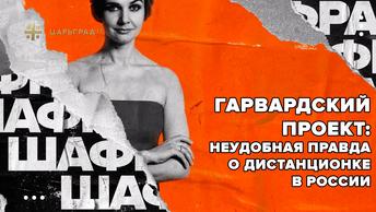 Гарвардский проект: Неудобная правда о дистанционке в России