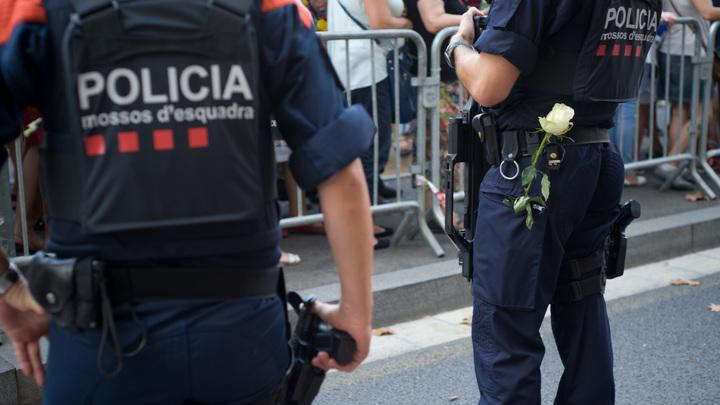 Российского предпринимателя Гринберга в Испании заподозрили в отмывании денег