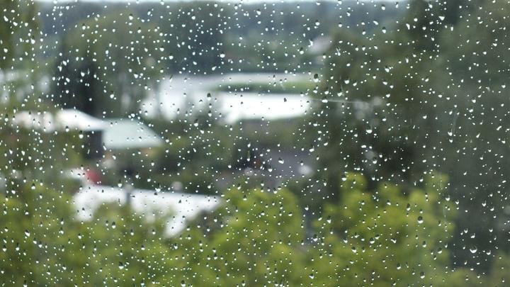 Дожди и резкое похолодание ждут нижегородцев в последние выходные апреля