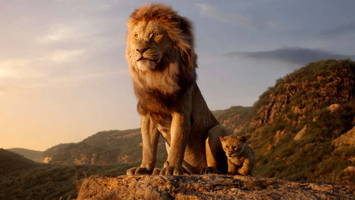 «Король Лев» – не тот прайд