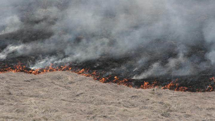 Крупный ландшафтный пожар под Ростовом: Полыхает камыш у Монастырского озера
