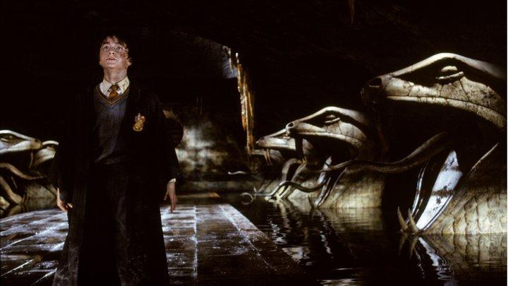 Шалость удалась: Белорусская оппозиция придумала таможенный заговор против Гарри Поттера