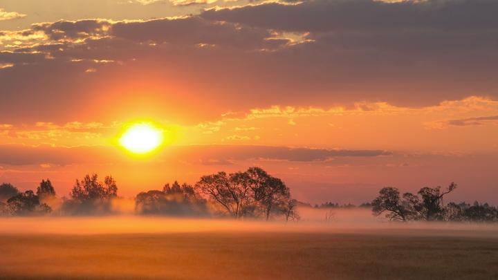 Ученые: Все пятна на Солнце со стороны Земли исчезли