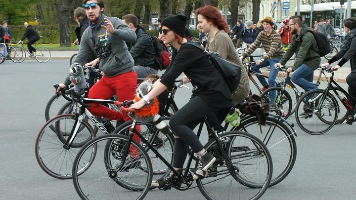 На улице Соколова-Соколенка обновили разметку на велодорожках