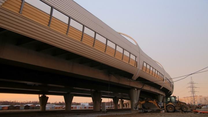 КАД-2, обновление метро и второй терминал Пулково: что будет обсуждать Беглов в Москве