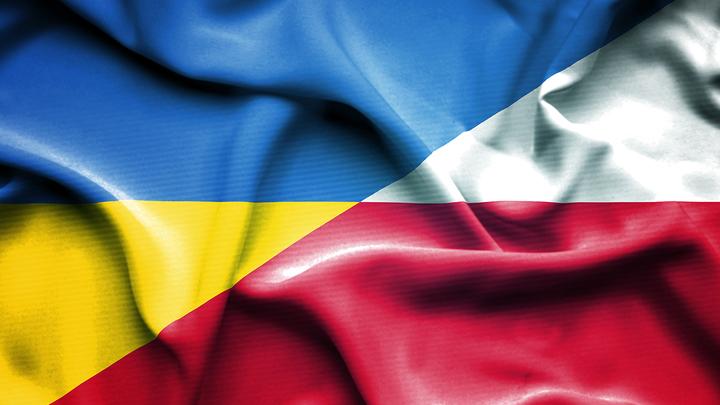 Владимир Олейник: Польша готова отхватить кусок Украины