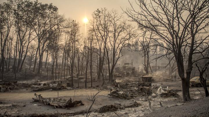 «Мендосино» больше нет: Крупнейший в истории Калифорнии лесной пожар потушен