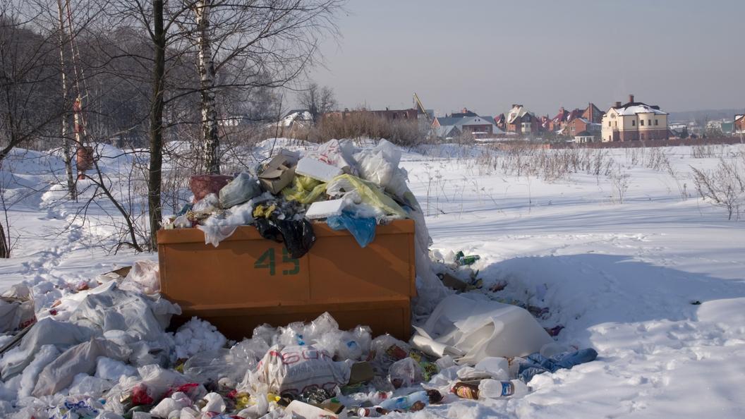 Полигон ТБО «Воловичи» вКоломенском округе рекультивируют в 2019-ом