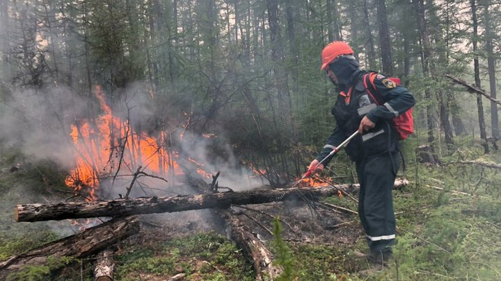 Чрезвычайная пожароопасность лесов зафиксирована в Нижегородской области