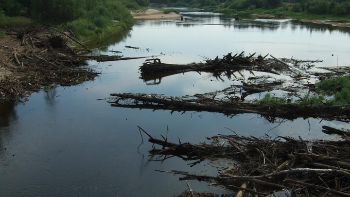 Чтобы вода во Владимирской области стала чище, нужен «волшебный пендель»