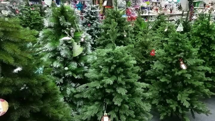В Челябинске власти устроят облавы на серых торговцев елками