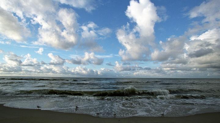 В Литве обвинили Россию в сбросе тонн парафина на побережье Куршской косы