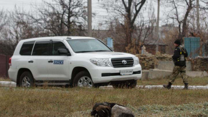 Наблюдатели ОБСЕ стали свидетелями взрыва на линии разграничения в Донбассе