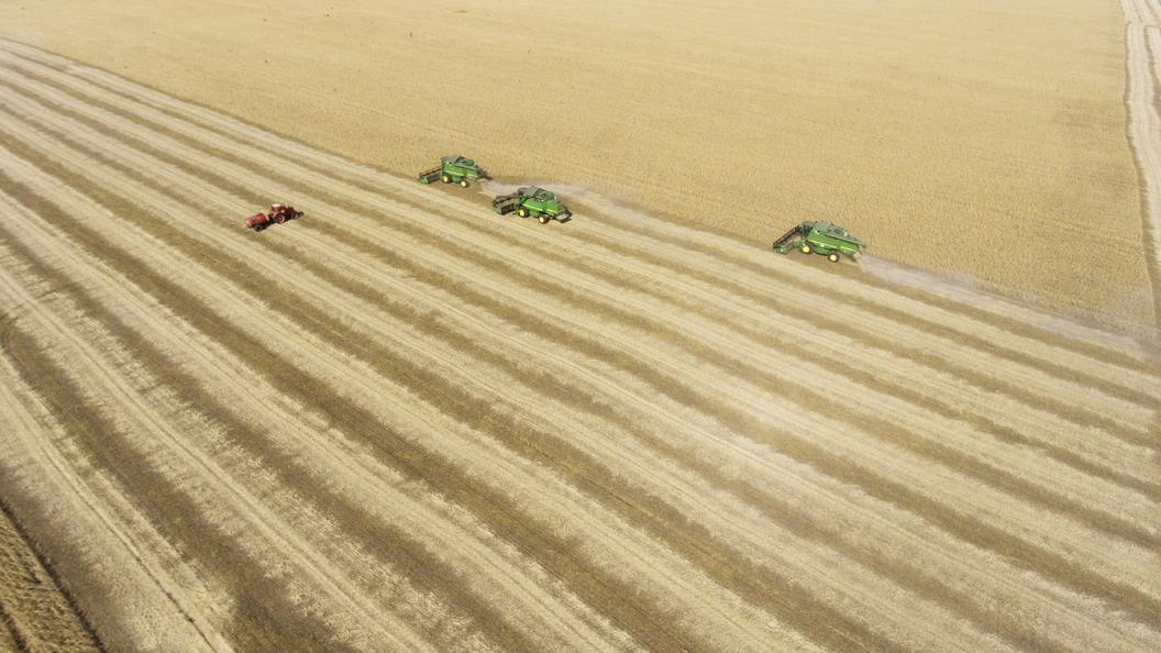 Оружейный концерн «Калашников» начнет перевозить зерно