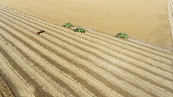 Концерн Калашников ежегодно будет перевозить до 900 тысяч тонн зерна