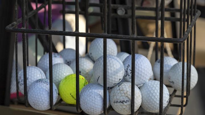 Министр спорта хочет сделать гольф доступным для всех. Жители России составили свой список желаний