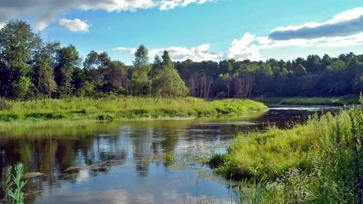 Из водохранилища в Волоколамске незаконно выкачивают воду