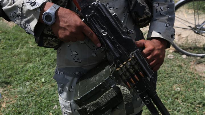 """""""Это не """"Талибан""""*: Военный журналист опроверг версию с уральскими террористами"""