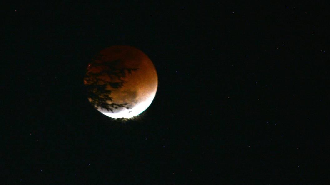 В эту ночь жители Москвы увидят дуэт суперполумесяца и Венеры