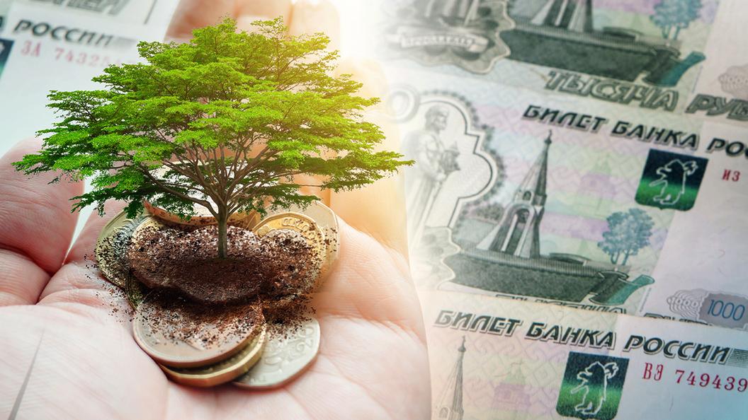 Вас обязали перечислять экологические платежи, но вы не понимаете, что это такое?