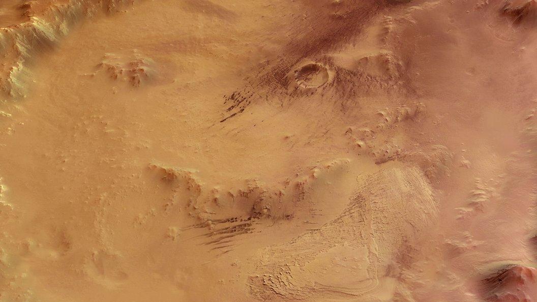 На поверхности Марса засняли разноцветных червей