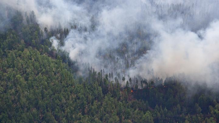 Москвичей предупредили об опасности из-за возможных пожаров