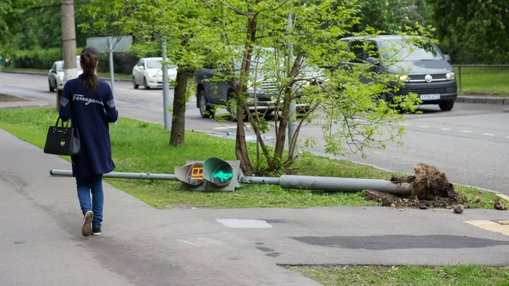 Ураган вырывал деревья с корнем: Шесть человек пострадали при шквалистом ветре в Москве