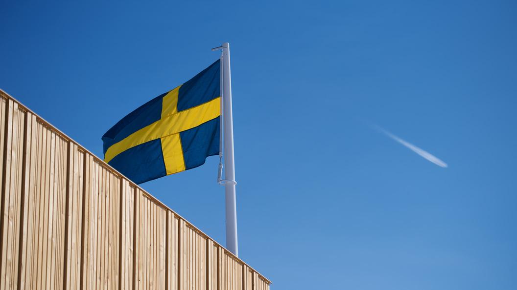 Почему Швеция решила вызвать посла Российской Федерации по«делу Скрипаля»