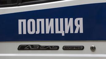 Московский бухгалтер поплатился за воровство поездкой в багажнике