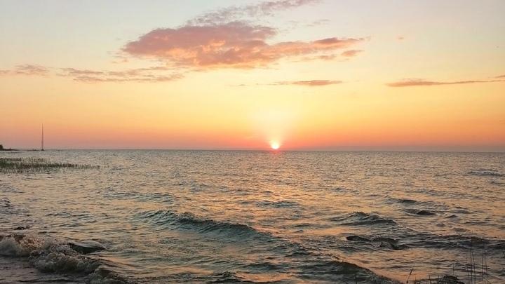 Тяжелая жара: МЧС предупредило о рекордных 36 градусах тепла в Ленобласти