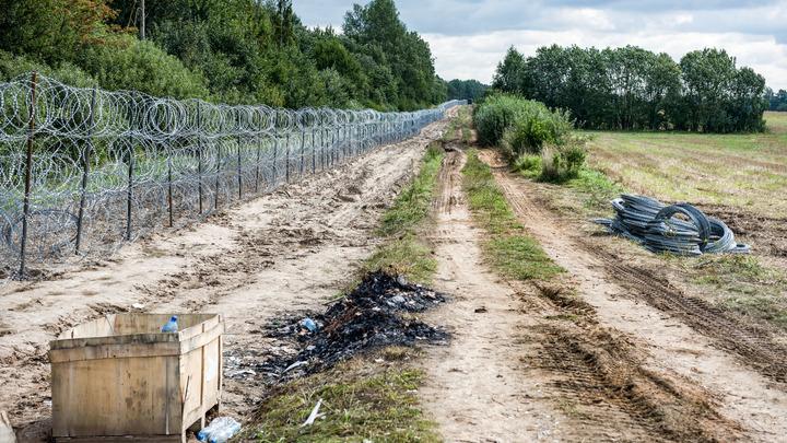 Тела мигрантов на белорусско-польской границе: что известно к этому часу