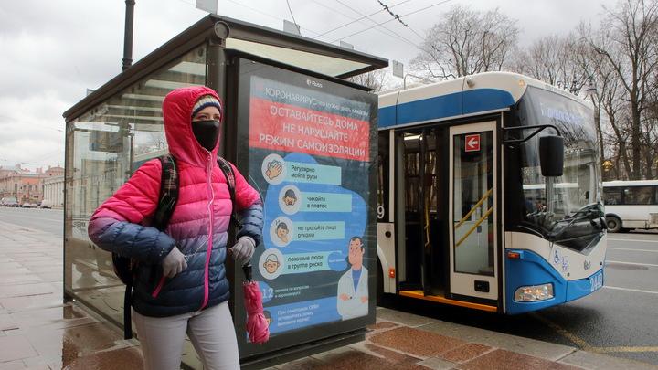 Ростовчане отреагировали на появление новых остановок в городе: Лучше бы бетонные построили