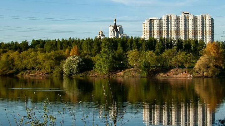 Эколог рассказал, откуда в нижегородских озёрах появились черви-паразиты, и чем они опасны