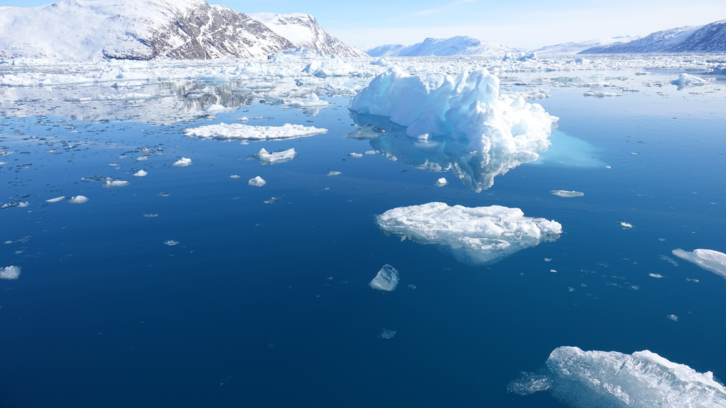 Трамп заявил о стратегической и экономической важности Арктики для США
