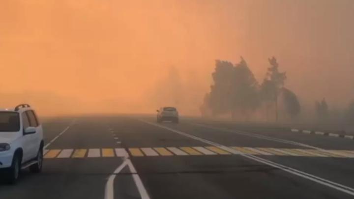 В Челябинской области остановили лесной пожар, из-за которого перекрыли дороги