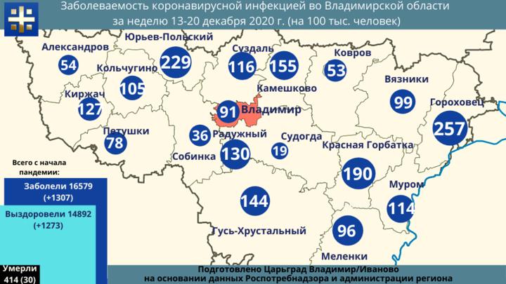 За неделю во Владимирской области зафиксирована смерть 30 жителей от коронавируса