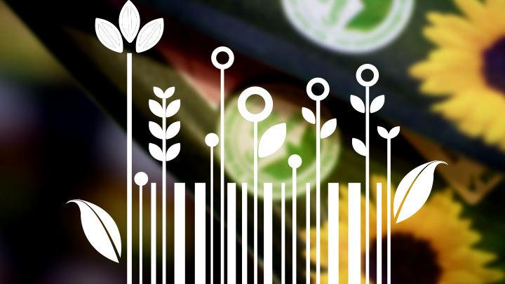 Россия будет экспортировать экопродукцию. Как не превратить зелёный бренд в клеймо?