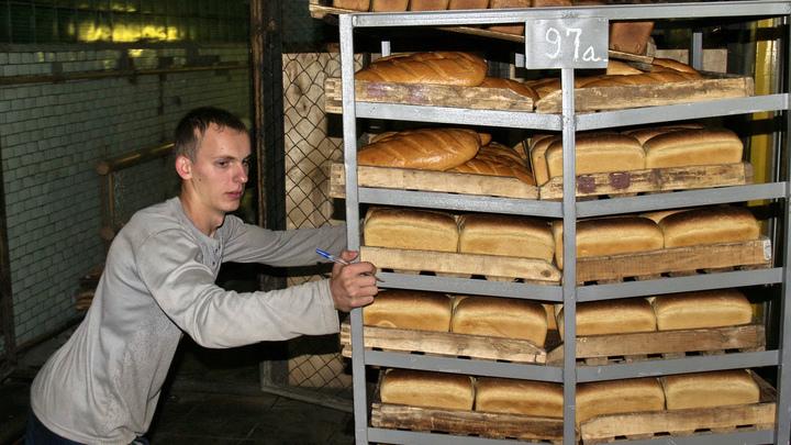 Рекордный урожай пшеницы выльется в подорожание хлеба? Эксперты предупредили граждан