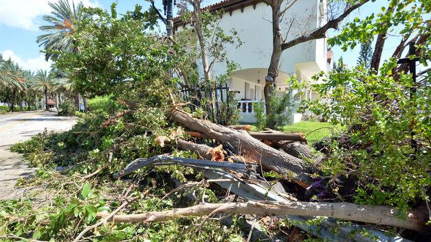 Природа восстала против США: Ущерб от стихийных бедствий обошелся Америке в рекордные 306 млрд долларов