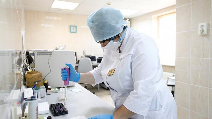 В Краснодаре ковид нашли у 58 человек, в Сочи – у 12: Сообщаем о новых случаях инфекции на Кубани