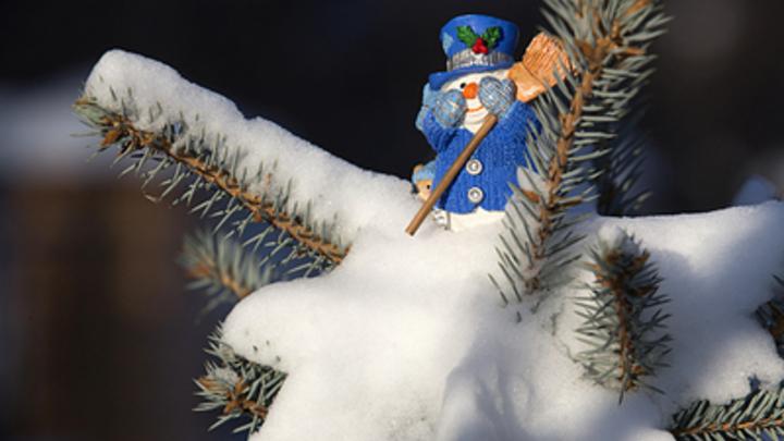 Курган к Новому году украсят по брендбуку