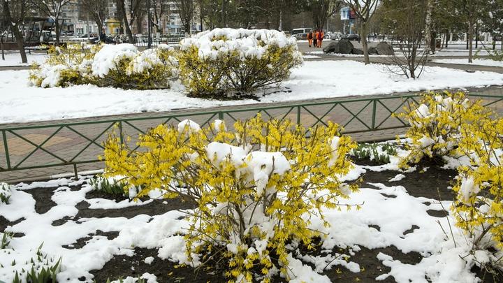 «Зима, холода»: Снег полностью засыпал Красноярск - видео