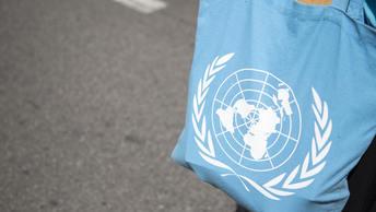 СМИ: ООН в восторге от российского плана по Сирии