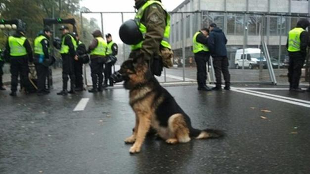Поставлено оцепление: На Украине полиция запрещает голосовать на выборах президента России