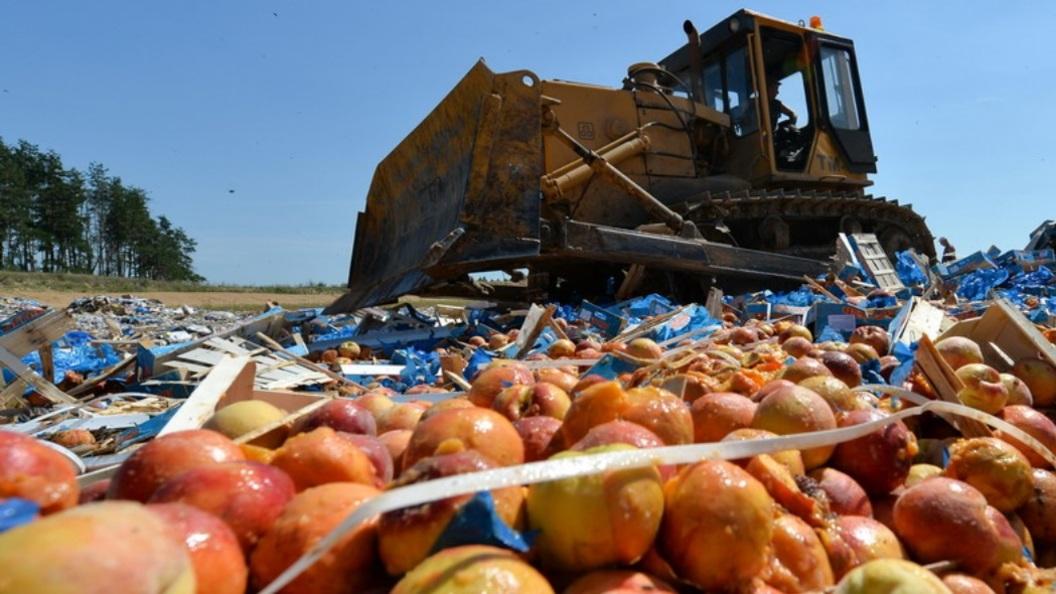Медведев утвердил план противодействия незаконному обороту индустриальной продукции