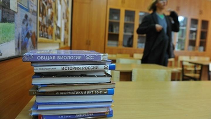 Через два года в школах России электроника может заменить бумажные учебники