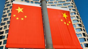 Французский ответ панда-дипломатии: Макрон подарит Си Цзиньпину скаковую лошадь