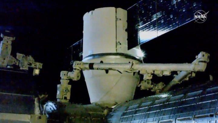 Запуск на студии Walt Disney? Интернет спорит о старте космического корабля Илона Маска